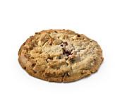 Ein Chocolate Chip Cookie vor weißem Hintergrund