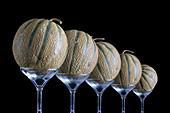 5 Melonen auf Glasständern vor schwarzem Hintergrund