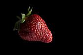 Erdbeere vor schwarzem Hintergrund
