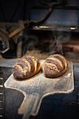 Zwei frisch gebackene Brote auf Holzschieber vor Holzofen