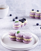 Heidelbeer-Macaron-Gebäck mit Sahnefüllung