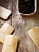Vegetable seeds to plant