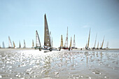 Sand yachting, St. Peter Ording, North Sea Schleswig-Holstein, Germany