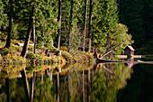 Glaswaldsee, Seebach, Black Forest, Germany