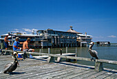 Fishing at the pier, Cedar Key Florida, USA