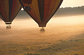 Balloon Safari, start in the morning, Massai Mara National Park, Kenia, Africa