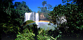 Iguazú Wasserfaelle mit Regenbogen Argentinien, Suedamerika