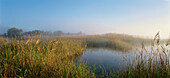 Laguna de Mazegar, Lagoon, New Castile, Castile-La Mancha, Castile, Spain