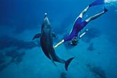 Dolphin with trainer, Roatan, Islas de la Bahia, Hunduras, Caribbean