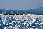 Sailing regatta on Lake Chiemsee, Bavaria, Germany