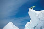 Snowsurfer before the jump on a snow krantz in Switzerland