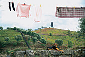 Dog and clothesline, Douro Valley, Portugal
