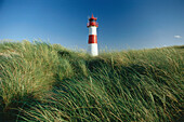 Lighthouse between marram grass, North Sea