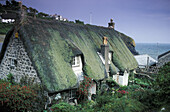Thatched house at the coast, Cadgwith, The Lizard, Cornwall, England, Great Britain, Europe