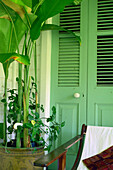 Chair on veranda, Balembouche, old plantation, today accommodation, St. Lucia, Caribbean