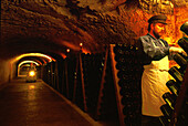 Man in a wine cellar, Champagne, France, Europe