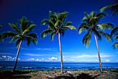 Black Sand Beach, Ambrym, Vanuatu South Seas