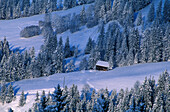 View to a lonely framehouse, Kitzbuhel, Tyrol, Austria