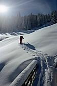 Skitour on deep snow, Appenzell, Canton Appenzell, Switzerland