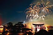 Fireworks above the lake at Epcot Center at night, Disneyworld, Orlando, Florida, USA, America