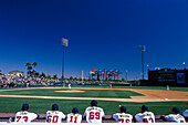 Baseball complex, Disneyworld, Orlando Florida, USA