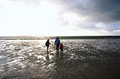 Mother and children at beach of Utersum, Foehr island, Schleswig-Holstein, Germany