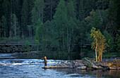 Fisher, Salmon, Lake Suomunjaervi Karelia, Finland