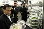 Queen Mary 2, Waiters with orderd dishes, Queen Mary 2, QM2 Kellner holen ihre bestellten Gerichte in der Hauptkueche ab.