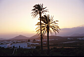 Landscape, Yaiza, Lanzarote, Canary Islands, Spain