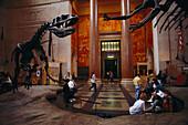 Natural History Museum, Manhattan New York, USA