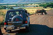 People at a jeep looking at a rhinoceros, Pilanesberg National Park, Mpamalanga, South Africa, Africa