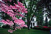 Hamptons, Spring, Long Island New York, USA