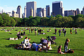 People on the lawn in the sunlight, Central Park, New York, USA, America