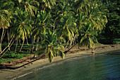 Playa Anadel, Halbinsel Samana, Dominikanische Republik Karibik