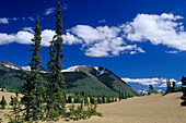 Smallest desert in the world, Carcross Desert, Carcross, Yukon Territory, Canada