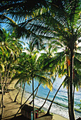 Playa Anadel, Halbinsel Samana, KB-Original ist beim Fotografen FMF Dominikanische Republik Karibik, Amerika