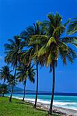 Strand bei Buff Bay, Portland Jamaika, Karibik