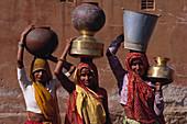 Women fetching water, Tilonia, Ajmer, Rajasthan, India, Asia
