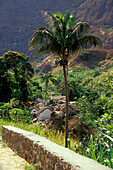 Mountain village, Paul, Santo Antao, Cape Verde Islands, Africa