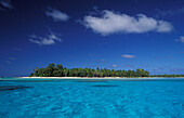 Palm island of the atoll Rangiroa in the sunlight, French Polynesia, South Pacific, Oceania