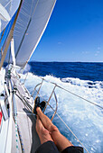 Sailing boat at full speed in the sunlight, St. Vincent, Grenadines, Caribbean, America
