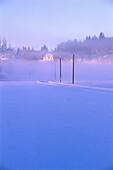 Snow covered street in the morning mist, Vaestergoetland, Sweden, Europe