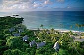 View at the palm beach of an idyllic island, Chumbe Island, Tanzania, Africa