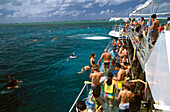 People wearing swimwear on an excursion boat and snorkeling in the sea, Agincourt Reef, Quicksilver Ponton, Queensland, Australia