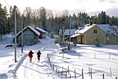 Two cross country skiers on a snow covered road in the sunlight, Vastergotland, Sweden