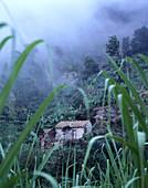 Landscape, Fields, Santo Antao Cape Verde