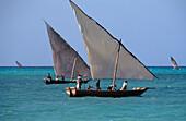 Fishing boat, Dhow with fishermen, Nungwi, Zanzibar, Tanzania