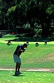 Kaenguruhs auf Golfplatz, Anglesea, Victoria Austalia