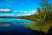 An idyllic lake reflecting clouds, Lapland, Sweden, Europe