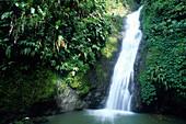 Fontainbleu Wasserfall, Grand Etang Forest Reserve Grenada